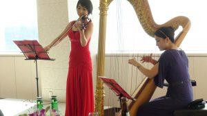 ハープ&ヴァイオリン1